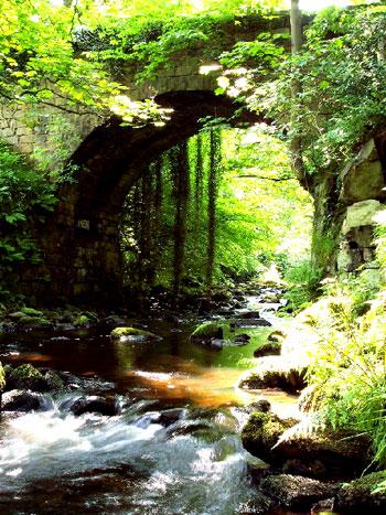 Cragg-Vale-River