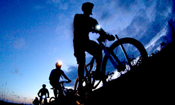 Night_Cycle