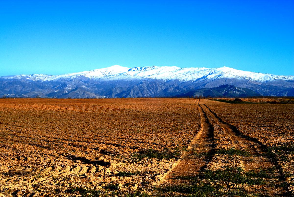 sierra-nevada-cycling