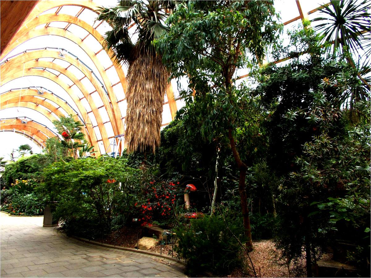 winter-gardens